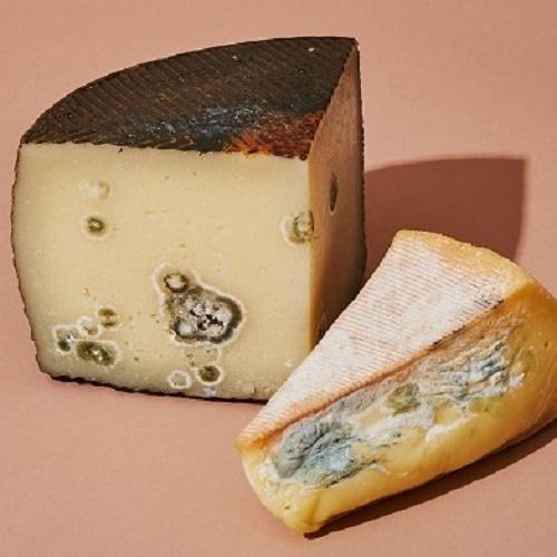 Скоринка сиру